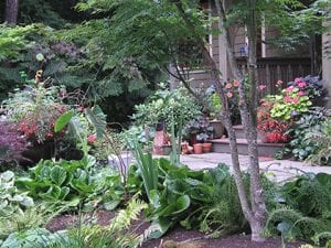 in-home-gardening-landscaping-consulting